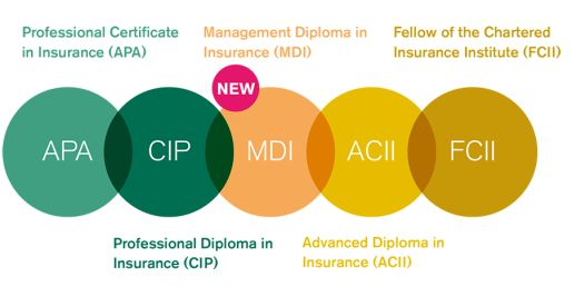 s international financial services centre learn more about insurance institute member benefits at iii ie member services